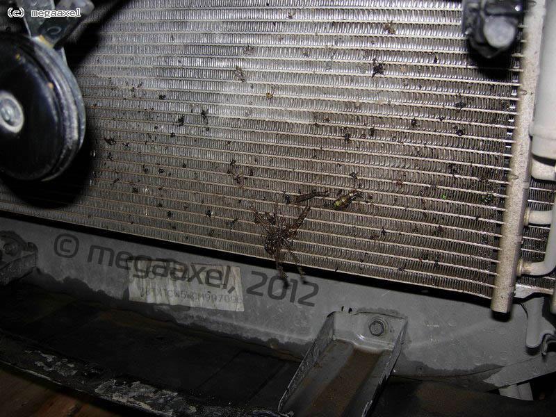 radiator_grill_01.jpg